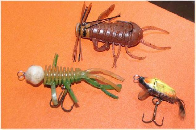 как сделать приманку для тараканов в домашних условиях